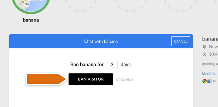 banning visitor during chat